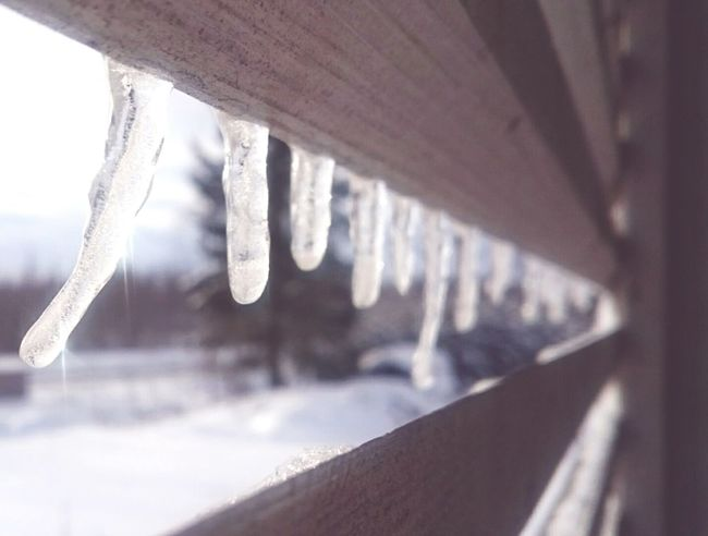 Icicles Sunlight Wintertime Cold Morning Bad Quality