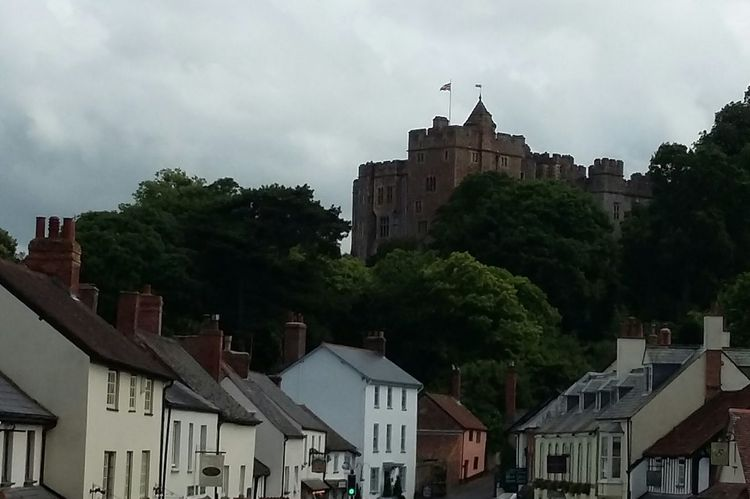 Dunster Castle from Dunster Village Somerset Castle Trees Historical Building Historic Architecture Summer Road Trip Relaxing