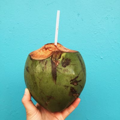 Person Food And Drink Holding Close-up Wall - Building Feature Freshness Blue Healthy Eating Lifestyles Green Color Personal Perspective Human Finger Coconut Tropical Puerto Rico