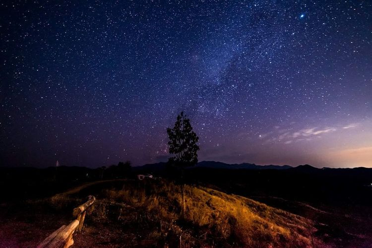 Night Space Star - Space Tree Nature Landscape Sky Astronomy Milky Way Arts Culture And Entertainment Space And Astronomy Beauty In Nature Scenics Galaxy Sunset No People Mountain Outdoors