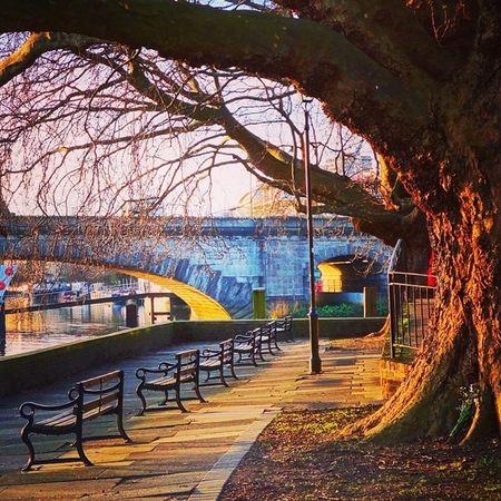 Low winter sun & Kew Bridge ☀️??? #chiswick #kew Mashpics Top_masters From_city Pro_shooters Vscocam Uk_potd Fmcz VSCO Gramminginlondon Kew Londonthroughmycam Chiswick Timeoutlondon Allshots_ Qx100 London_only Alan_in_london Igers_london Ig_london Aauk Capture_today