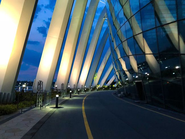 Goodmorning :) Singapore Garden By The Bay Transportation Road Architecture Built Structure City Illuminated Sky Symbol Marking The Way Forward Building Exterior No People