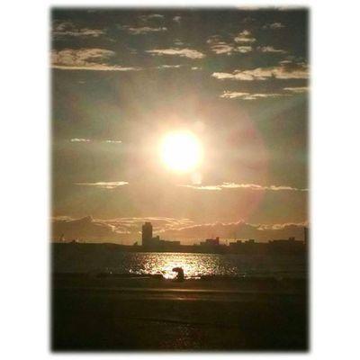 🌇 夕陽が出ました🎶😉 Setting sun came out🎶😉 ※ ※ 名古屋港 Port_of_Nagoya 日本 Japan aichinagoya 夕焼け sunset 夕暮れ dusk 夕陽 settingsun 自然 nature 安らぎ Peace 眩しい Dazzling 夕空 evningsky 綺麗 beatiful 風景 landscape orangevista 🌇 sunset_japan_nagoya_mitu