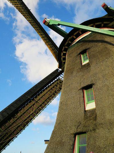 Showcase: January Iloveamsterdam Amsterdamcity Amsterdam Your Amsterdam