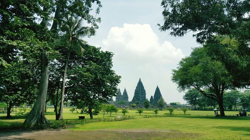 A view of Prambanan Temple Tree Prambanan Temple, Yogyakarta Yogyakarta, Central Java - Indonesia INDONESIA EyeEmNewHere Tourist Travel The Great Outdoors - 2017 EyeEm Awards