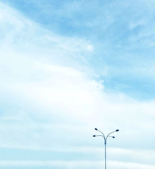 Cloud - Sky Sky Low Angle View Day Outdoors Nature No People Street Light Beauty In Nature Bird Animal Themes Minimalistic Photography Minimalism Photography Minimalist Photography  Minimalism Minimalistic Minimalist Minimal EyeEmNewHere