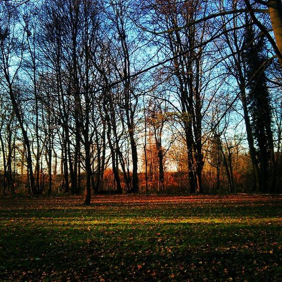 Ruhrpark! TT! Oberhausen Sunset