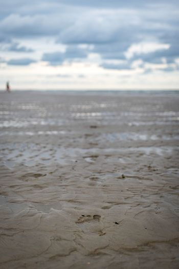 Spiekeroog, North Germany Sea Water Nature Beach Sky Horizon Over Water Sand Beauty In Nature Tranquility Tranquil Scene Scenics Outdoors No People Day Close-up Footprints In The Sand