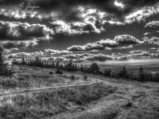 Hdr_Collection Bw_collection EyeEm Best Shots - Black + White EyeEm Best Shots - HDR