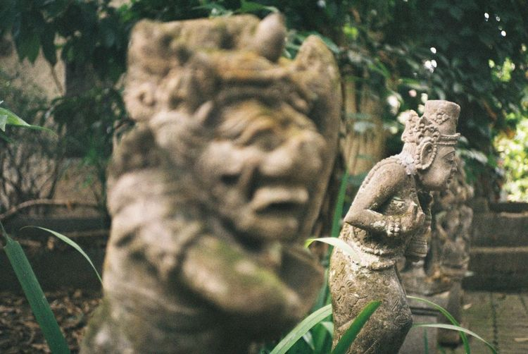 35mm 35mm Film Bali Bali, Indonesia Architecture Art And Craft Carving - Craft Product Close-up Craft Creativity Day Focus On Foreground History Human Representation Male Likeness No People Old Religion Representation Sculpture Statue Stone Material The Past Ubud