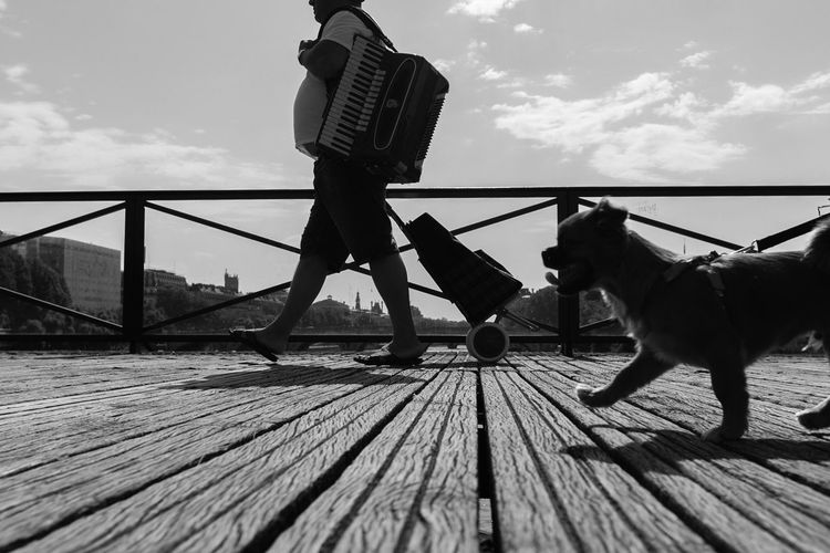 The musician and the dog Blackandwhite Monochrome Contrast Shadow Humor Stride Side Profile Street Photography Streetphotography Street Paris Artist Musician Walking Silhouette Bridge Sky Pets Cloud - Sky Real People Dog Outdoors Lifestyles Men Wood - Material
