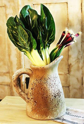 Bouquet Food Old Vase Silver Beetle Sprinbg Onion Vase Vintage Visual Feast