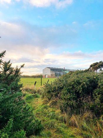 Visit Scotland Sky Cloud - Sky Built Structure Tree Field Day Nature