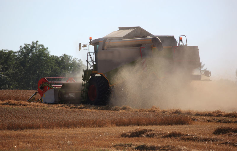 harvester during wheat harvest on a dry dusty field Wheat Field Agricultural Equipment Agricultural Machinery Agriculture Combine Harvester Crop  Day Dust Environment Farm Farmer Field Harvesting Land Land Vehicle Landscape Machinery Mode Of Transportation Nature Outdoors Plant Rural Scene Spraying Tractor Transportation