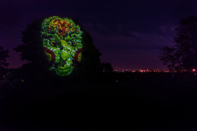 Light painting of a green face on a tree in Kolomenskoye park during the 2018 Moscow Light Festival Colors Green Kolomenskoye Light Festival Light Painting Moscow Colorful Dark Face Illuminated Night No People Outdoors Plant Sky Tree