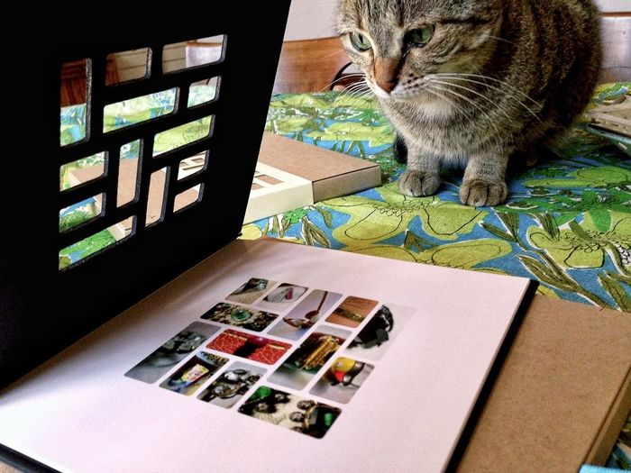 My Mosaic Photobooks came!!