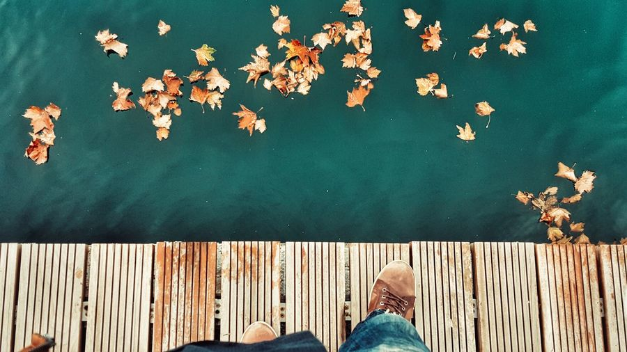 Autumn Barefoot Human Leg High Angle View Autumn Colors Autumn Leaves Personal Perspective View From Above Waterfront Human Body Part Personal Style From Where I Stand Nature On Your Doorstep Standing Seaside Leaves Nature Photography Naturelovers Colors Of Autumn Colours Of Nature Shades Of Winter