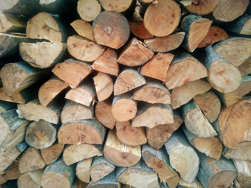 Firewood Wood Firewood Firewood Stack Nature Life Nature On Your Doorstep Nature Photography Keeping Warm Staying Warm Preparing For Winter Autumn Autumn Colors