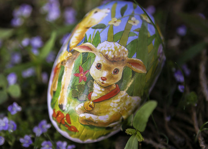 Egg Design Egg Decorating Grass Flowers Easter Dekoration Jesus The Lamb Fragility Blue Flowers Flowers Easter Lamb Easter Egg With Lamb Animal Representation Easter Outdoors Focus On Foreground Celebration Day No People Close-up Nature