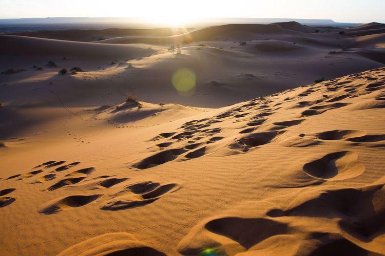 Scenic View Of Sahara Desert During Sunrise