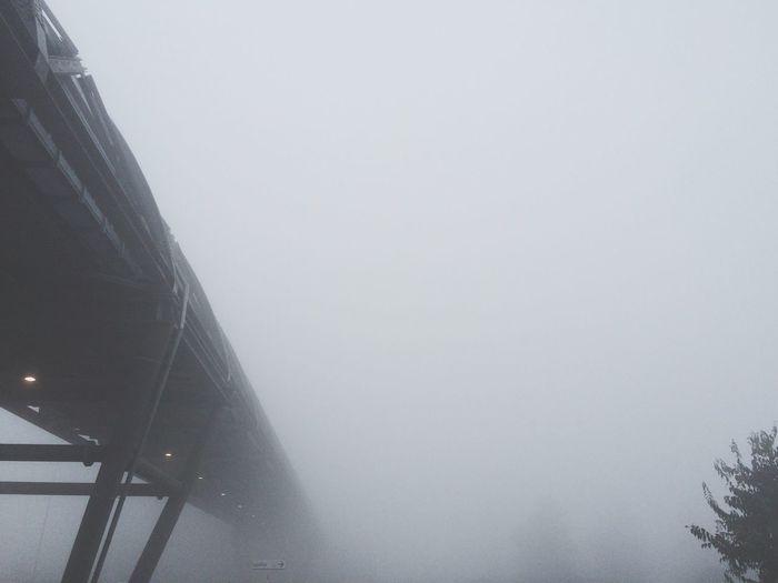 Sembra un foto in bianco e nero, non lo è... Nebbia Milano Cittàgrigia