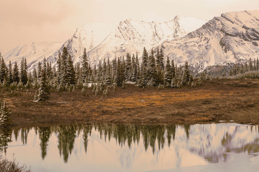 EyeEm Best Shots EyeEm Nature Lover Trees Beauty In Nature Canada Day Icefield Parkway Lake Landscape Mountain Mountain Range Nature No People Outdoors Range Red Light Reflection Scenics Sky Snow Tranquility Tree Water Waterfront Wilderness