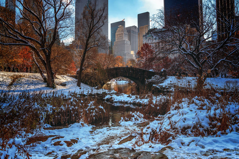 Gapstow Bridge in Central Park after a snow storm. Bow Bridge Central Park Fall Colors Winter Architecture Bare Tree Beauty In Nature City Cold Temperature Outdoors Skyscraper Snow Tree Weather Winter
