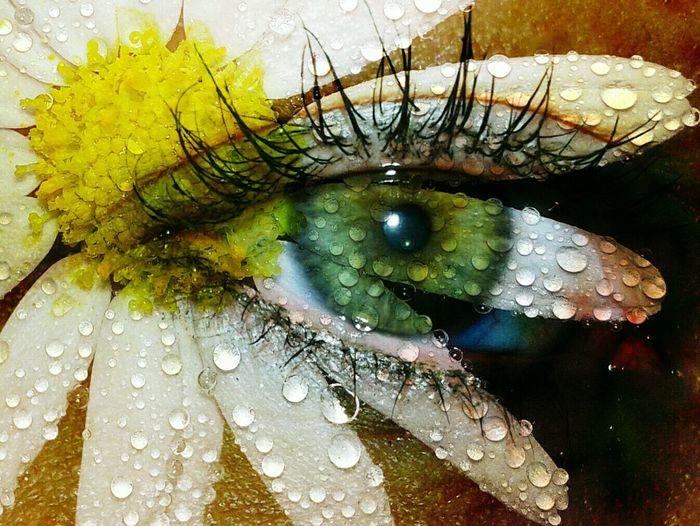 EyeEm Eye