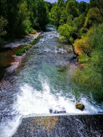 EyeEmNewHere Outdoors Biking And Photography Freshness Backgrounds Green Color Growth Blue Sky Blue River Wellness For EyeEm , HUAWEI P 9