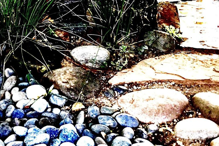 Day High Angle View Outdoors No People Nature Large Group Of Objects Close-up Tree Water Pebble Pebbles Tranquility Rocks Green Color Garden Photography Path In Nature Rock Photography