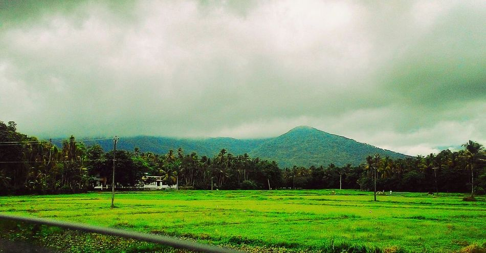 Pour it down. SidharthAjul Rain Nature Chilling Out Mother Nature Clouds Hills Raining Cold Eye Em Best Shots Water Trees Love The Essence Of Summer The Essense Of Summer in Vayalada, Kozhikode