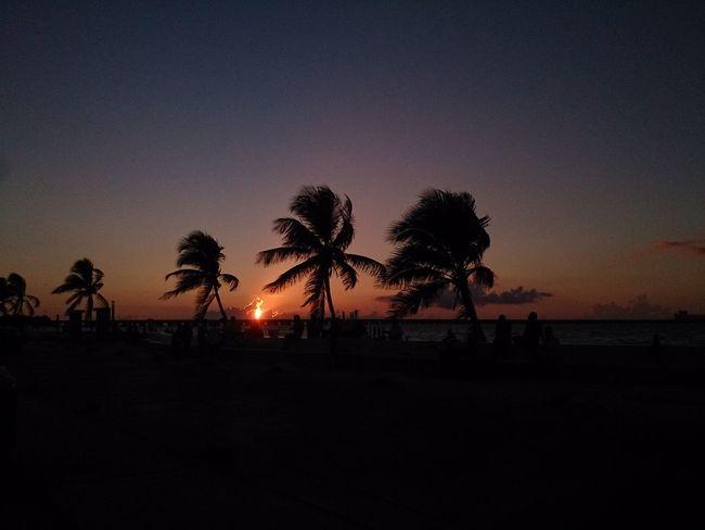 Shadows and the sunset... Progreso Mérida, Yucatán Beach Horizon Over Water Ocean Sand Sunset Xperia ZL Mobilephotography Sky Landscape Naturaleza Nature Clouds Shadows Contrast Palm Atardecer Playa
