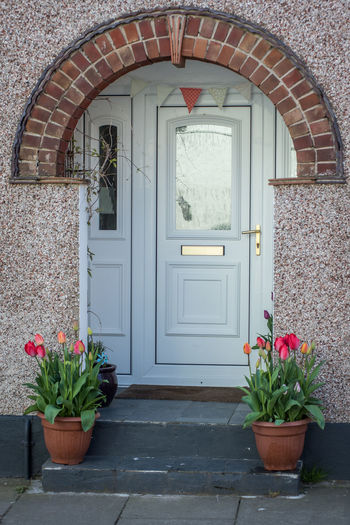 Arch Architecture Building Building Exterior Built Structure Closed Day Door Entrance Flower Flower Pot Flowering Plant Growth House Nature No People Outdoors Plant Potted Plant Springtime St David's Tulips In The Springtime Wall Wall - Building Feature