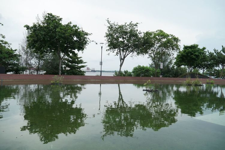 Punggol sea Reflection Tree Water Lake Waterfront Outdoors Nature Sky Day Beauty In Nature Tranquility No People Scenics PunggolBeach
