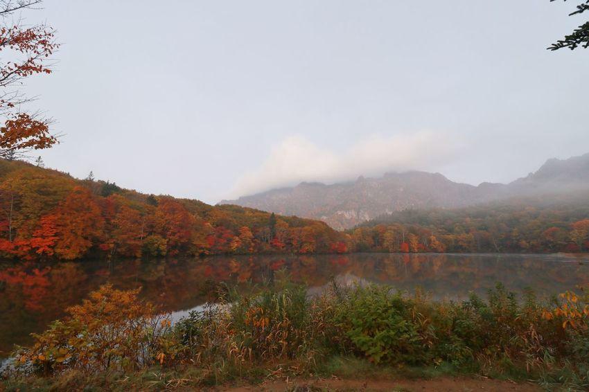 早朝の鏡池😆(2016.10.20) Tree Autumn Nature Landscape Lake Water Mountain Scenics Beauty In Nature Multi Colored Springtime Sky Change Horizontal Plant Outdoors No People Day おつかれさま😆