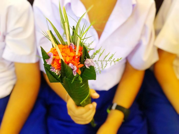 Flower cone for respecting teachers on teachers' days Flower Flowering Plant Plant Holding Close-up Freshness Midsection Women Indoors  People Nature Fragility Human Hand Beauty In Nature Vulnerability  Adult Flower Arrangement Real People Lifestyles Hand
