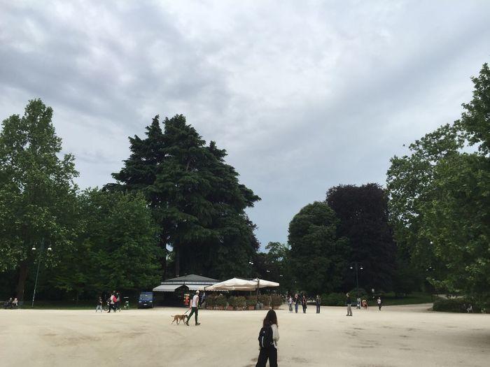 People walking by trees against sky