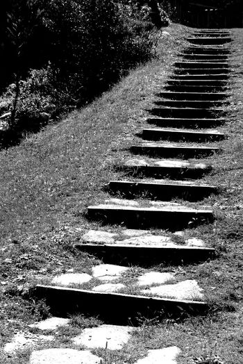 Close-up Day Geometry In Nature Nature No People Outdoors Stairs Urban Geometry