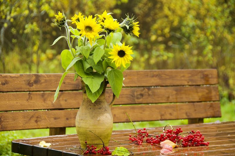 Close-up of yellow flowers on table