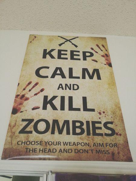 one of my swaggy posters // Poster Zombies  Zombie Apocalypse
