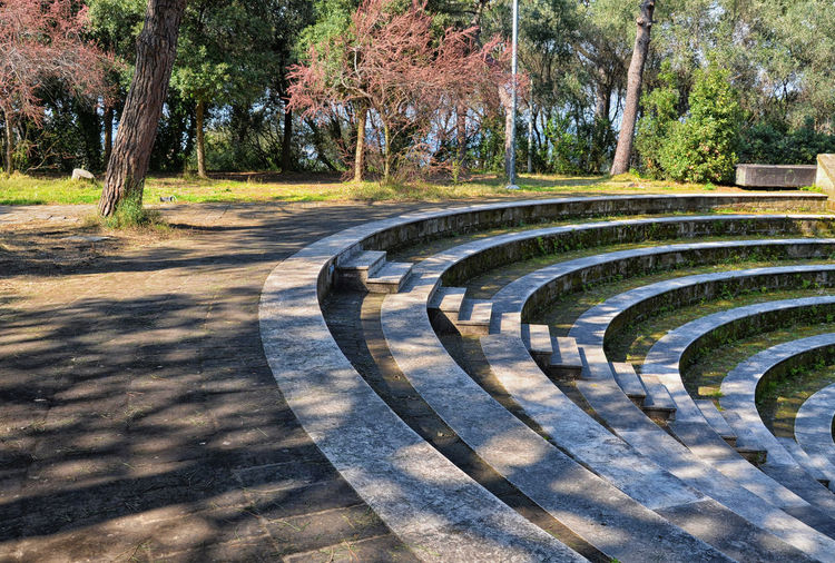 Amphitheater stairs. Amphitheatre Architecture Architecture_collection Built Structure Day Diminishing Perspective Eye4photography  EyeEm Gallery Growth High Angle View In A Row Nature Outdoors Park - Man Made Space Railing Stairs Steps Steps Sunlight The Way Forward Tranquility Tree Vanishing Point