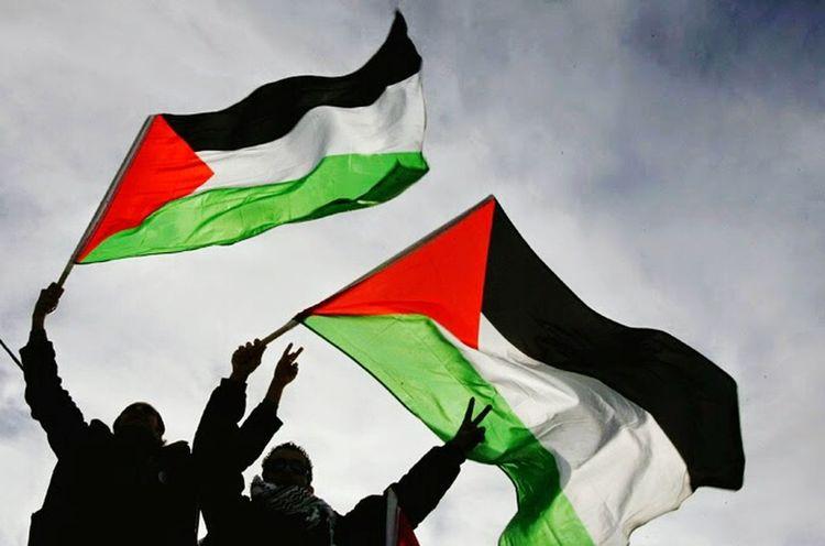 Iloveyou Palestine❤ FreePALESTINE!! i want go to palestine