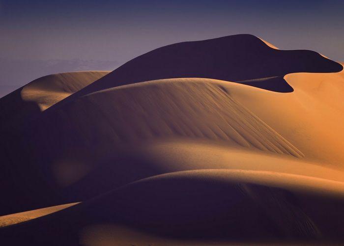 Sand Dune City