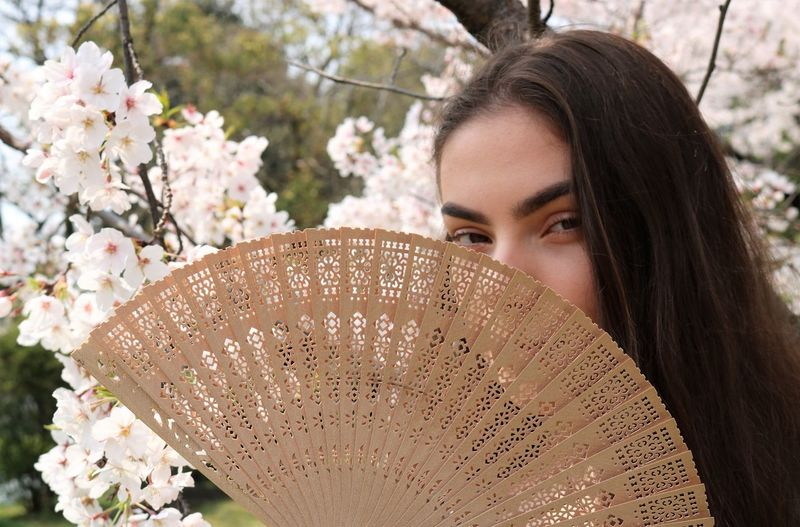 Brunette, Fan, Blossoms Young Adult Young Women Young Beautiful Beauty In Nature Beauty Beautiful Woman Beautiful Nature Fan Folding Fan Long Hair Brunette Brunette Girl  Cherry Blossom Cherry Blossoms Looking At Camera Delicate Beauty Hidden Spring Springtime Youth Teenager Teenage Girls My Best Photo