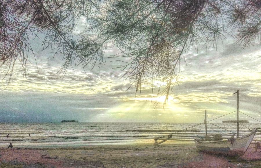 Landscape Beach Sky And Clouds Sunset Nature Tree Tranquility No People Beauty In Nature Tranquil Scene Outdoors