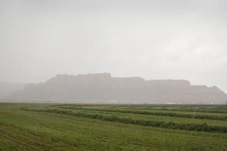 Rainstorm moving in Agriculture Field Rural Scene Crop  Farm Landscape Cultivated Land Nature Weather Fog No People Scenics Beauty In Nature Hay Field Stormy Weather Storm Approaching