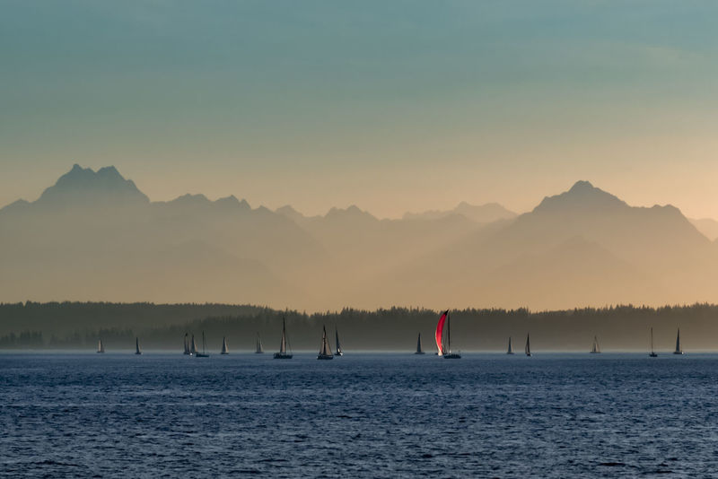 Sailboats sailing in Elliott bay near Seattle with the Olympic mountains in the distance. Focus on the red sail. Beauty In Nature Cruise Day Dusk Elliott Bay Hazy  Jagged Peaks Mountain Nature Olympic Mountains Outdoor Recreation Outdoors Pacific Northwest  Port Of Call Red Sailboats Scenics Seattle Sky Sunset Tranquility Travel Vacation Water Yacht Lost In The Landscape