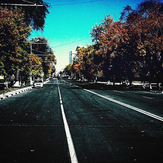 Autumn Street Beautiful Day