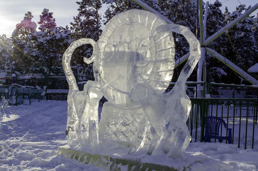 Winter Snow Yakutsk