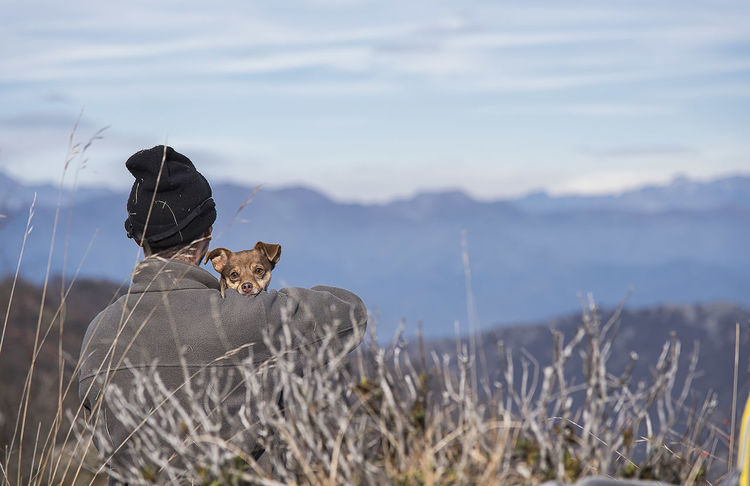 Animals In The Wild Dog Dog Love Doglover Domestic Animals Hug Mountain Nature Outdoors Togheter